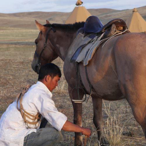 Mongolia riding