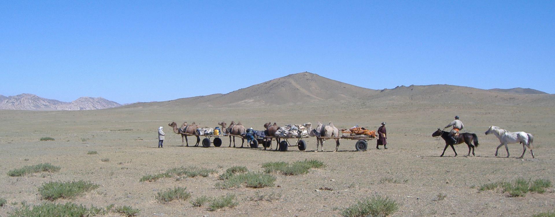 Camel carts on the Gobi Steppe