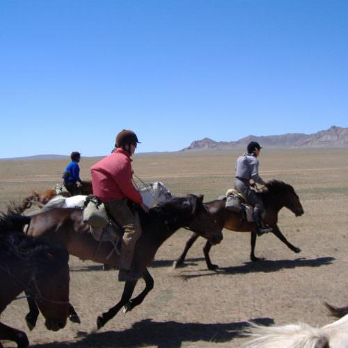 Mongolia gallop