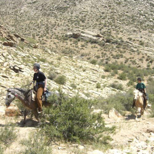 Mongolia steppes riding