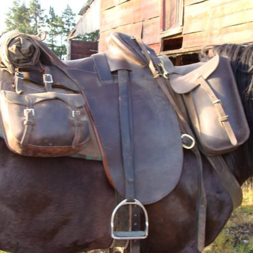 Comfortable saddles are key for the long days on the trail.