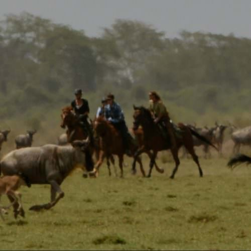 Horseback safari in the Serengeti