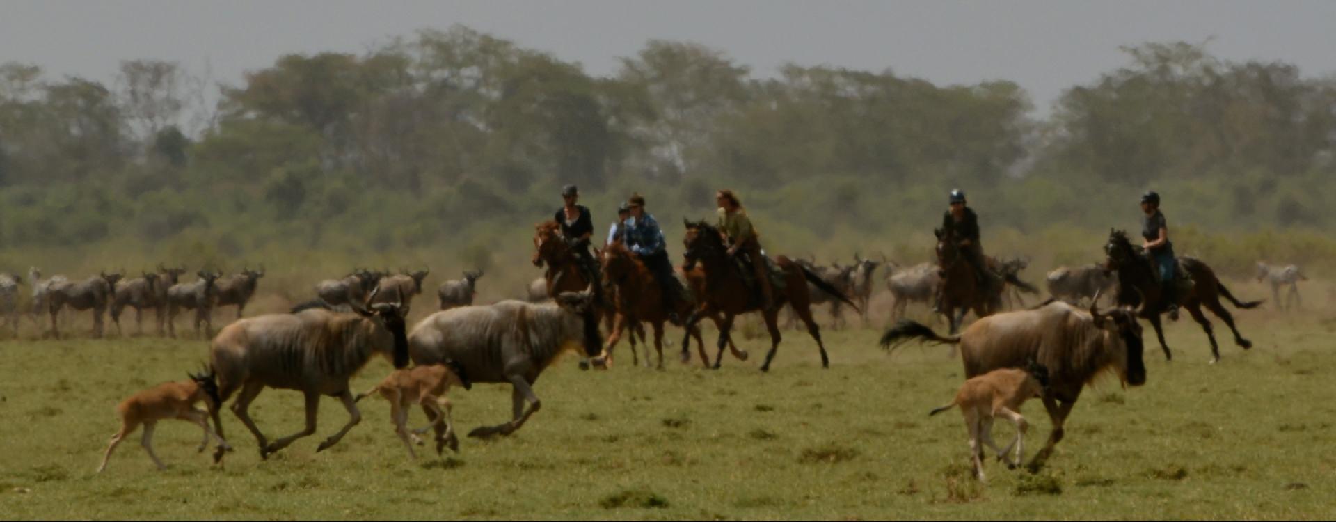 Horseback safari in the Serengeti