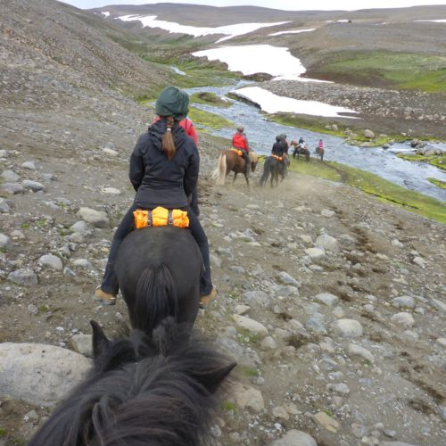 Iceland riding snow