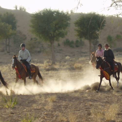 Horseback safari to Nagaur Fair Rajasthan