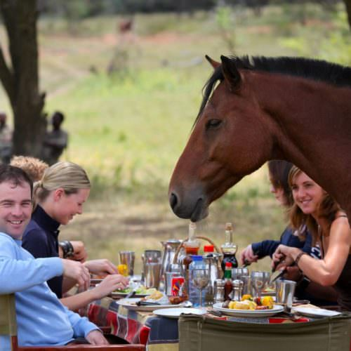Lunch in the bush