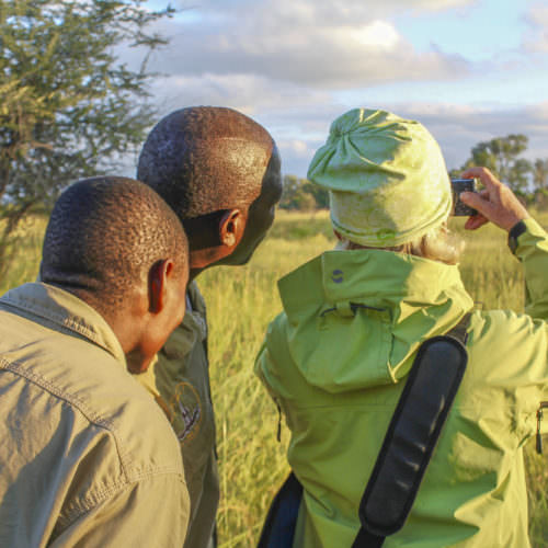 Mobile horseback safari in the Okavango Delta, Botswana. Game watching at sunset.
