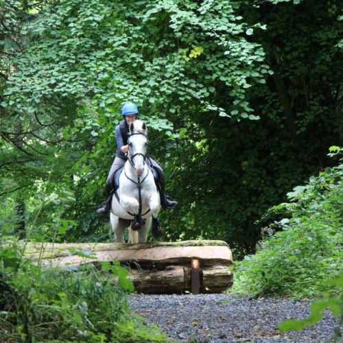 Ireland, Castle Leslie, horse, jumping