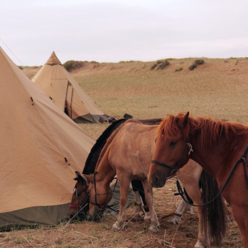Mongolia teepees camping