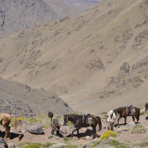 Riding on Mount Toubkal