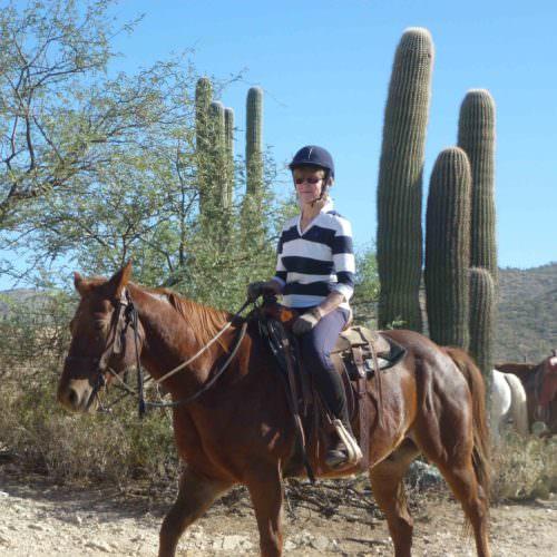 Guest riding chestnut horse through the desert cactus at Tanque Verde, Arizona