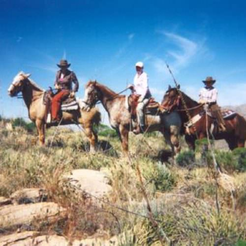 Trail riding at Tanque Verde. In The Saddle guest photo