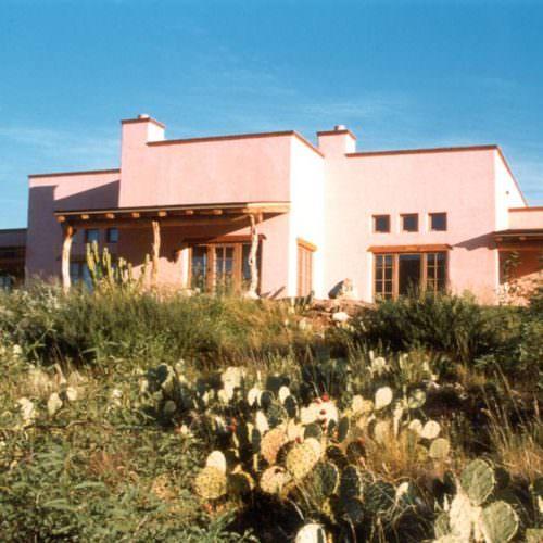 Tanque Verde. Cactus growing in the garden