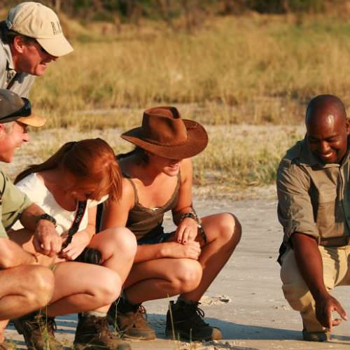 Riding Safari at Motswiri Camp, Okavango Delta, Botswana. Guides tracking.