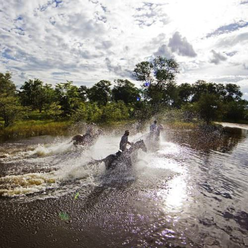 Riding Safari at Motswiri Camp, Okavango Delta, Botswana. Galloping through the water,
