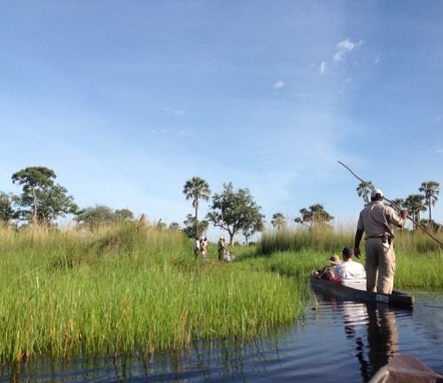 Mobile horseback safari in the Okavango Delta, Botswana. Traditional mokoros