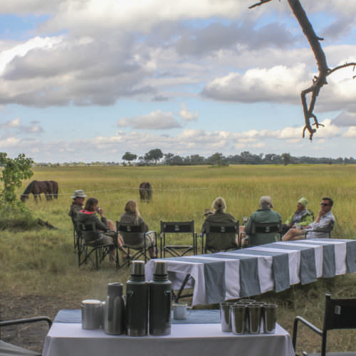Mobile horseback safari in the Okavango Delta, Botswana. Bush camp. Realaxing after riding.