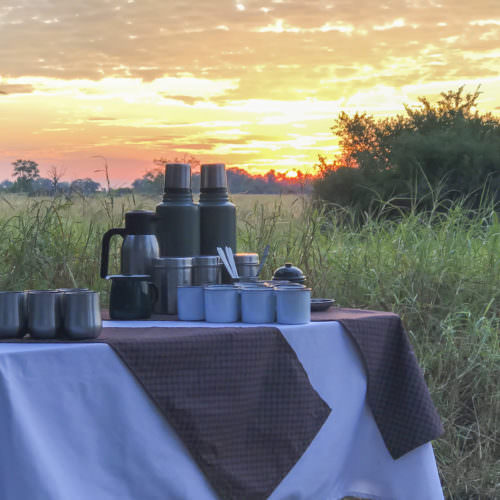Mobile horseback safari in the Okavango Delta. Riding in Botswana. Amazing sunsets.