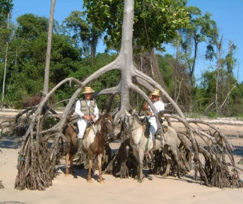 Riding Holidays in the Amazon Delta. Adventurous trips on horseback in Brazil. Horses on the beach.