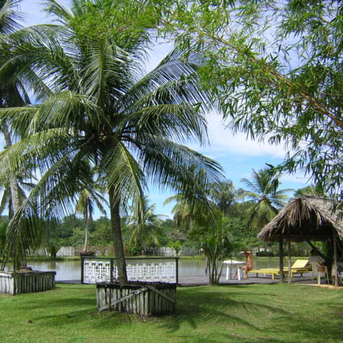 Riding Holidays in the Amazon Delta. Adventurous trips on horseback in Brazil. Relaxing by the pool.