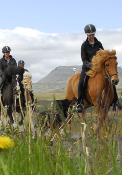 Riding with Hestasport, Iceland