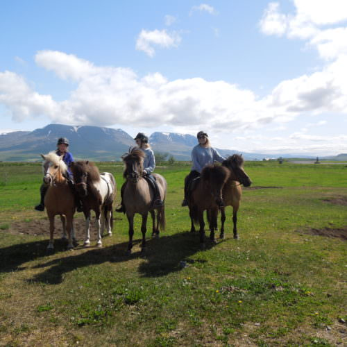 Iceland family riding