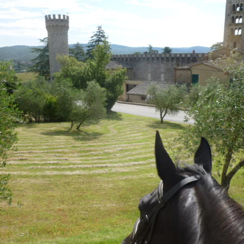 Tuscany Berardenga
