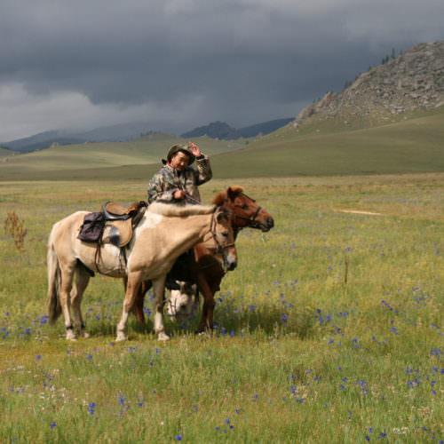 Monolia nomad riding