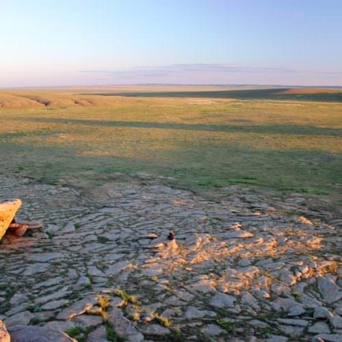 Mongolia steppes landscape