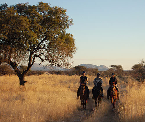 Riding safari in Namibia