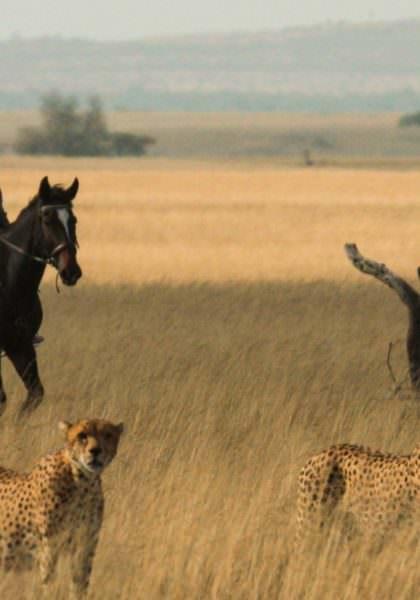 Riding safari at Ol Donyo Lodge, Kenya