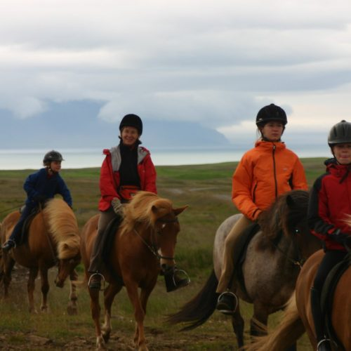Iceland children riding