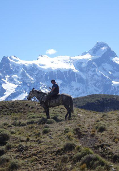 Guacho Torres del Paine