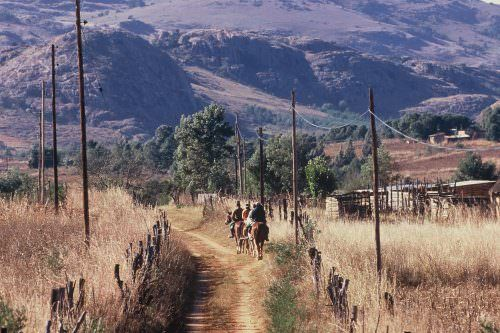 Riding holidays in Swaziland. Safaris in Africa. Horses and scenery
