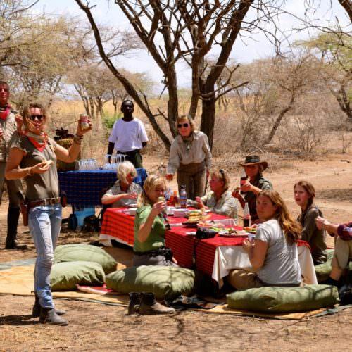 Serengeti picnic