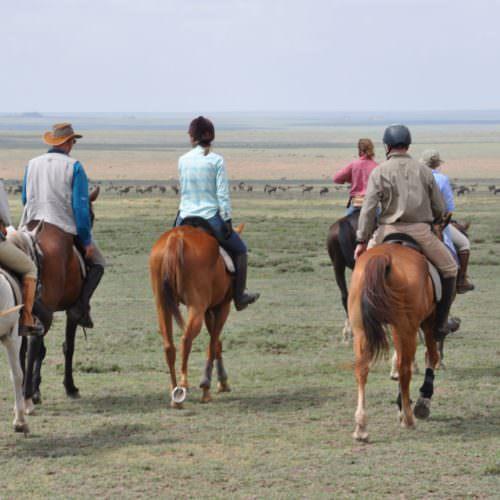 Riding in serengeti
