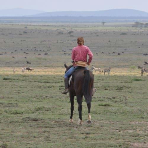 Horse riding in Tanzania serengeti