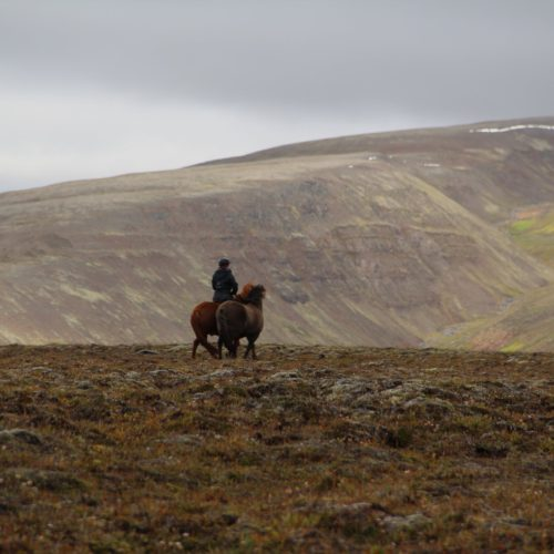 Iceland off road riding