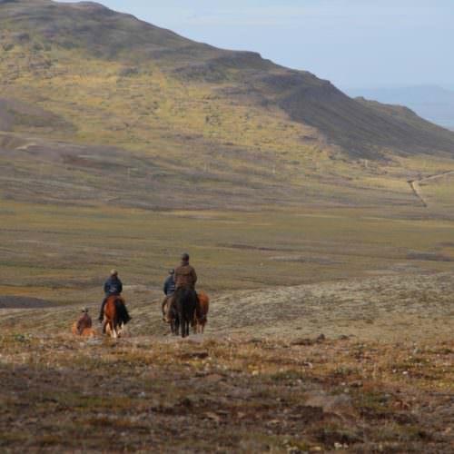 Iceland mountain riding