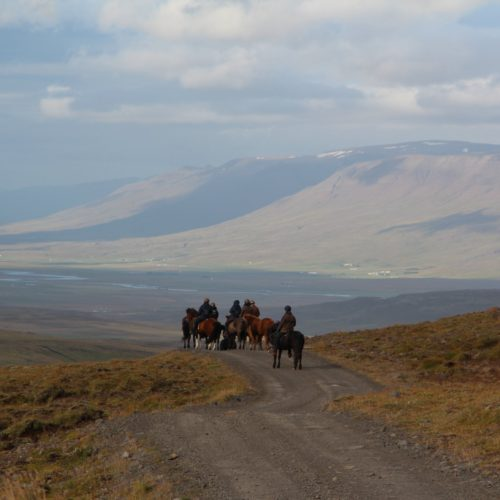 Iceland riding views