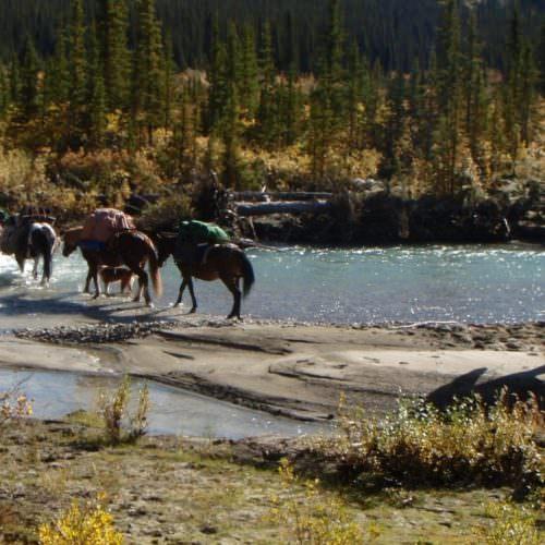 Riding through the Shine Valley - Yukon