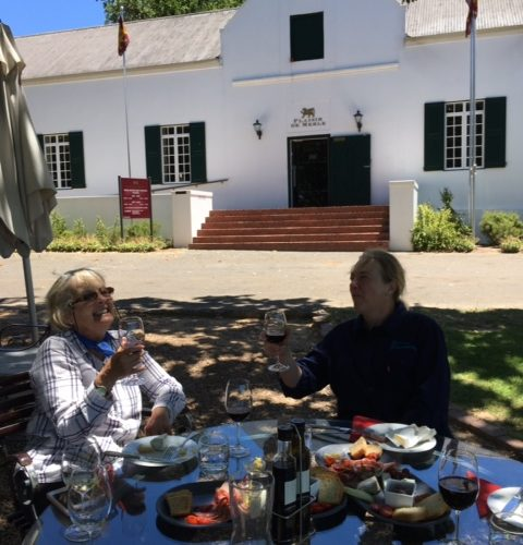 Wine in the Cape Winelands