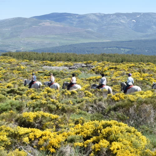 castles of gredos, riding in spain