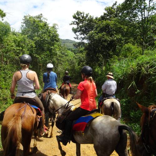 Riding through the rainforest.