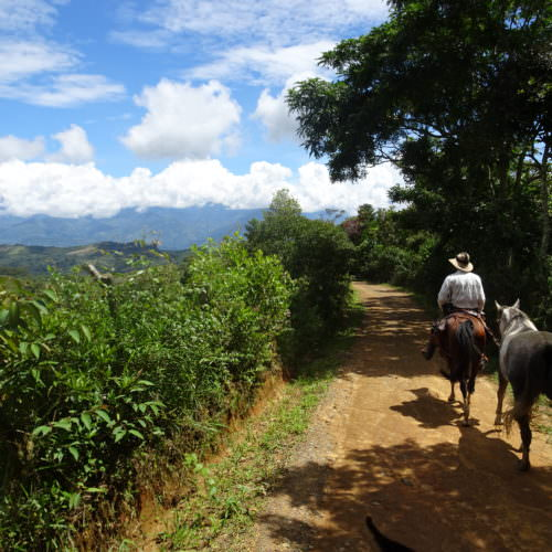 Riding from Paramo to El Palmar.