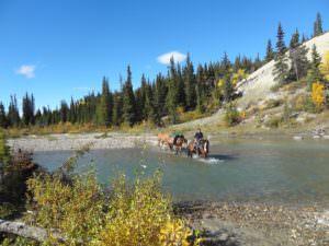 Yukon Shine Valley