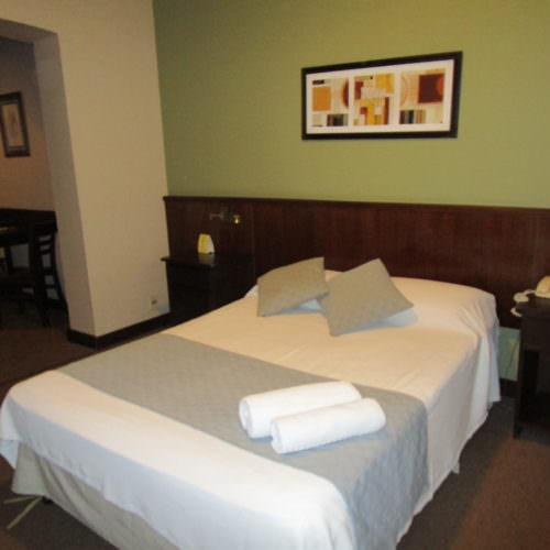 Hotel Parque Oceanico - double