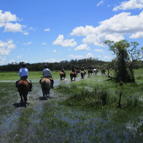 Uruguay wetlands. Beach riding holidays in Uruguay with In The Saddle.