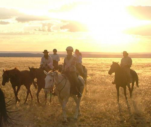 evening horse riding in namibia