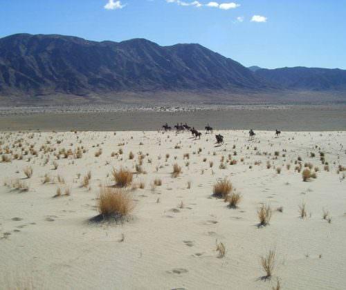 Namib desert scenery